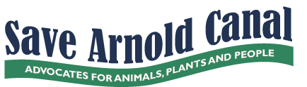 Save Arnold Canal